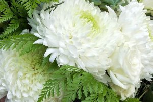 eco_flowers_and_gifts_eco_flowers_and_gifts_type_1-_wedding_flowers_bouquet_image_623511_0